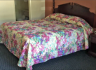 king bed, night stand with telephone, carpet flooring, carpet flooring, doorway to bathroom with vanity unit and toilet
